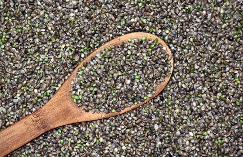 neloupaná konopná semínka