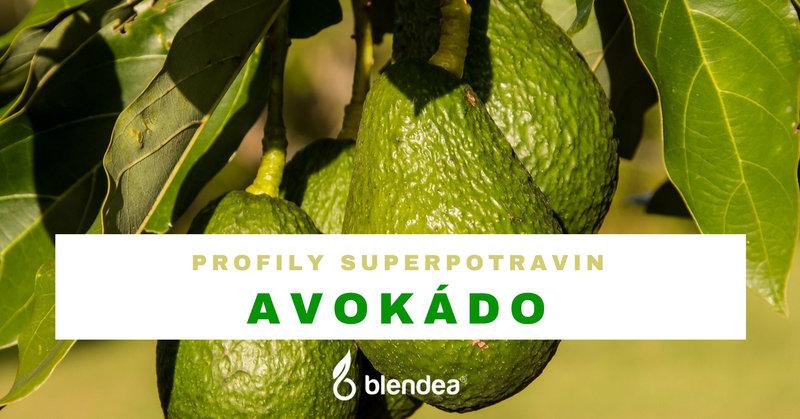profil avokado