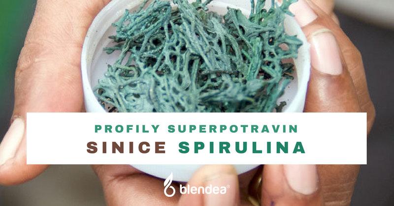 profil sinice spirulina