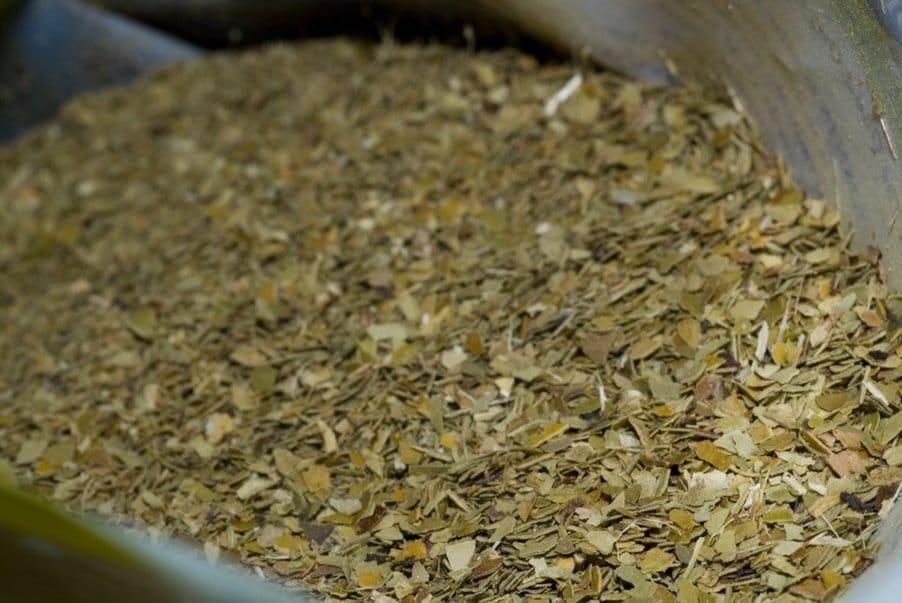 sušené listy yerba maté